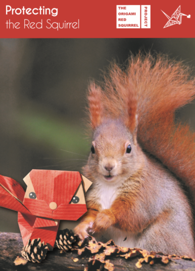 portada red squirrel
